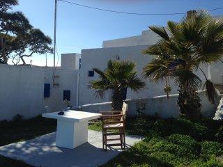 Greek Goddess Dadi Pyrgos Santorini - Pyrgos vacation rentals