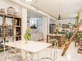LOFT DENEUVE - Madrid vacation rentals
