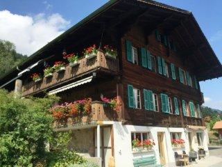 Chalet OaseCoja - Ferien im Grünen - Erlenbach im Simmental vacation rentals