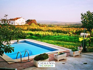 Masia in Pla del Penedès for up to 10 people, in the gorgeous Catalan - Sant Pere de Riudebitlles vacation rentals