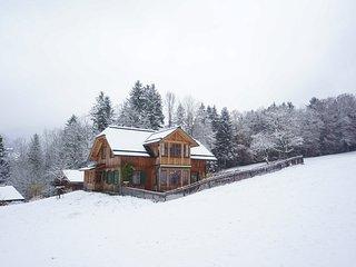 Helles, grosses, neues Holzhaus, Panoramablick, Skigebiet und See 5 Minuten. - Altaussee vacation rentals
