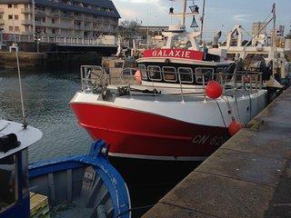 Petit havre de paix en Normandie à 800 m de la mer - Courseulles-sur-Mer vacation rentals