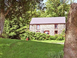 Nice House with Internet Access and Fireplace - Porthyrhyd vacation rentals