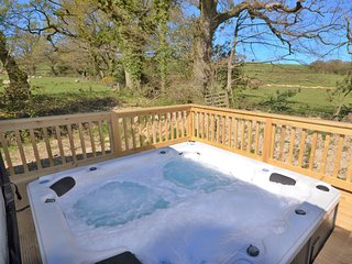 3 bedroom House with Internet Access in Fowley Cross - Fowley Cross vacation rentals