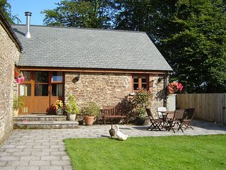 Nice Barn with Internet Access and Fireplace - Newton St Petrock vacation rentals
