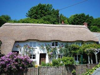 VALEN Cottage in Weare Giffard - Weare Giffard vacation rentals