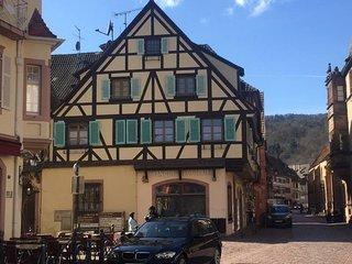 Centre historique, routes des vins et spa - Kaysersberg vacation rentals