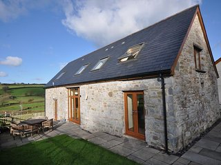 4 bedroom House with Internet Access in Llandyfaelog - Llandyfaelog vacation rentals