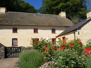 Charming 4 bedroom House in Cribyn with Internet Access - Cribyn vacation rentals