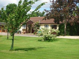 1 bedroom House with Internet Access in Buckhorn Weston - Buckhorn Weston vacation rentals