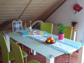Ferienwohnung in ruhiger Lage in MV Krakow am See - Krakow am See vacation rentals