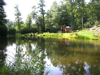 6BR/4BA/4000SF/Pond/HotTub/Kings/Massage Chr - Asheville vacation rentals
