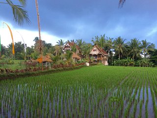 The Rice Joglo Eco-Luxury Retreat - Agung Suite - Ubud vacation rentals