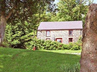 Nice 3 bedroom House in Porthyrhyd - Porthyrhyd vacation rentals