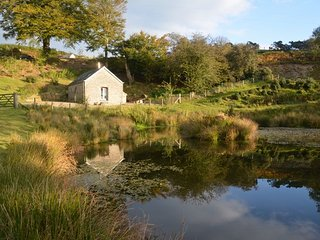 Romantic 1 bedroom Cribyn House with Internet Access - Cribyn vacation rentals