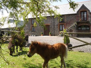 4 bedroom Barn with Internet Access in Riddlecombe - Riddlecombe vacation rentals