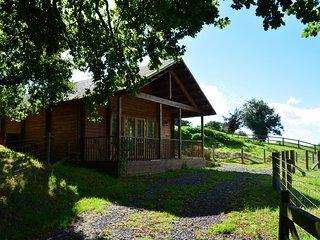 Romantic 1 bedroom House in Buckhorn Weston - Buckhorn Weston vacation rentals