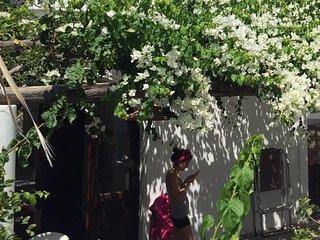 casa Martha - stile fascino e panorama mozzafiato - Stromboli vacation rentals