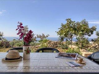 Il Pino - splendida villetta vista mare con giardino - Patu vacation rentals