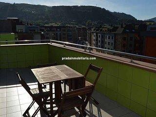 Alquiler ático terraza soleada en Villaviciosa. - Villaviciosa vacation rentals