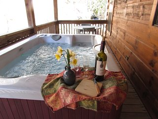 Moondance Log Cabin on creek with Hot Tub frie oit ans free WiFi - Hot Springs vacation rentals