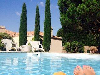 10 kms du puy du fou , magnifique maison avec piscine et grand jardin clos - Les Herbiers vacation rentals