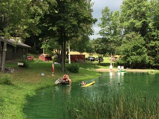 Secluded home, Private Beach/Pond - Arkville vacation rentals