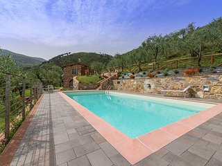Gorgeous Villa with A/C and Wireless Internet - Capannori vacation rentals