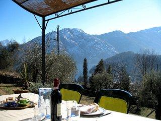 Lenno cottage degli Ulivi - Lenno vacation rentals