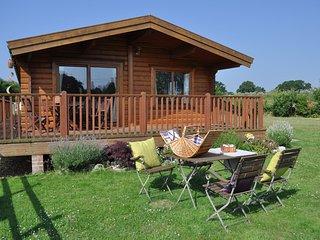 NFL75 Log Cabin in West Wellow - Wellow vacation rentals