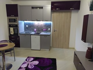Nice 1 bedroom Apartment in Plovdiv - Plovdiv vacation rentals