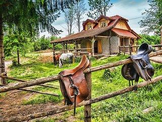 Convenient Bungalow in Rakovica with A/C, sleeps 4 - Rakovica vacation rentals