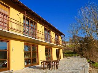 Grote moderne villa in Piemonte - Vesime vacation rentals