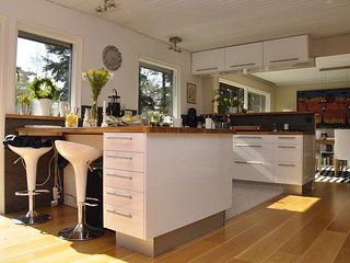 Beautiful House with Internet Access and Wireless Internet - Hollviken vacation rentals