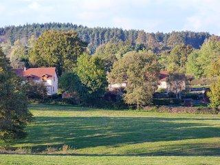 2 bedroom House with Internet Access in Montluçon - Montluçon vacation rentals