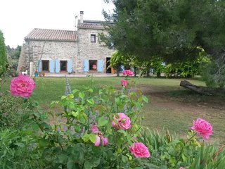 Stunning stone farmhouse with pool surrounded by vineyards just outside village - Paraza vacation rentals