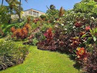 Bird of Paradise, 4BR,3.5BA, private warm pool, walk to beaches, wonderful views - Poipu vacation rentals