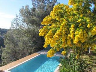Grande maison provençale colline niçoise - Colomars vacation rentals