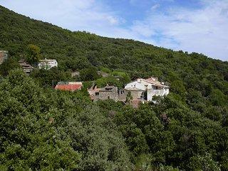 Lief huisje in natuurpark Haut-Languedoc MET ZONNIG DAKTERRAS in Zuid Frankrijk - Cabrerolles vacation rentals