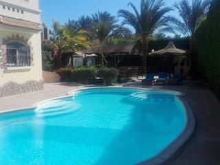 villa with big praivte sweampool and big garden - Hurghada vacation rentals