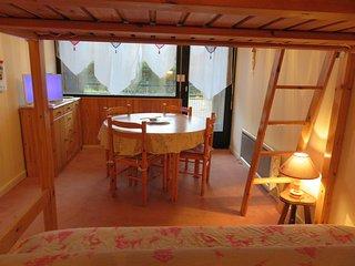 Appartement F1 proche lac vill - Xonrupt-Longemer vacation rentals