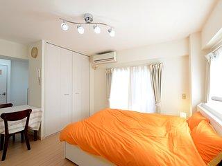Nishi-Ogikubo 1BR Studio Type-B (SSH1BRS-B) 5F - Suginami vacation rentals