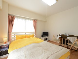 Nishi-Ogikubo 1BR Studio Type-A (SSH1BRS-A) 4F - Suginami vacation rentals