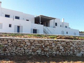 Unique Villas 300m from two sandy beaches - Parikia vacation rentals