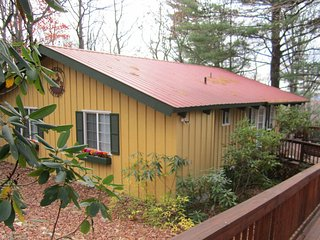 Sunset Hideaway - Cabin in Doe Run Community at Groundhog Mountain - Hillsville vacation rentals