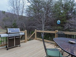 3 bedroom House with Deck in Black Mountain - Black Mountain vacation rentals
