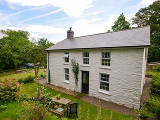 Perfect House with Internet Access and Fireplace - Llanfair Clydogau vacation rentals
