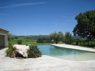 Wonderful Provencal Mas with infinity pool - Buisson vacation rentals
