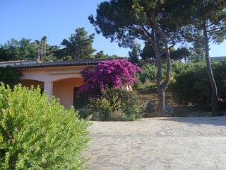 Appartamento Lacona Isola d' Elba - Lacona vacation rentals