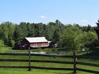 Lovely Cottage with Deck and Television - Middlebrook vacation rentals